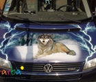 Поклейка виниловой пленки на авто (полноцветная печать)